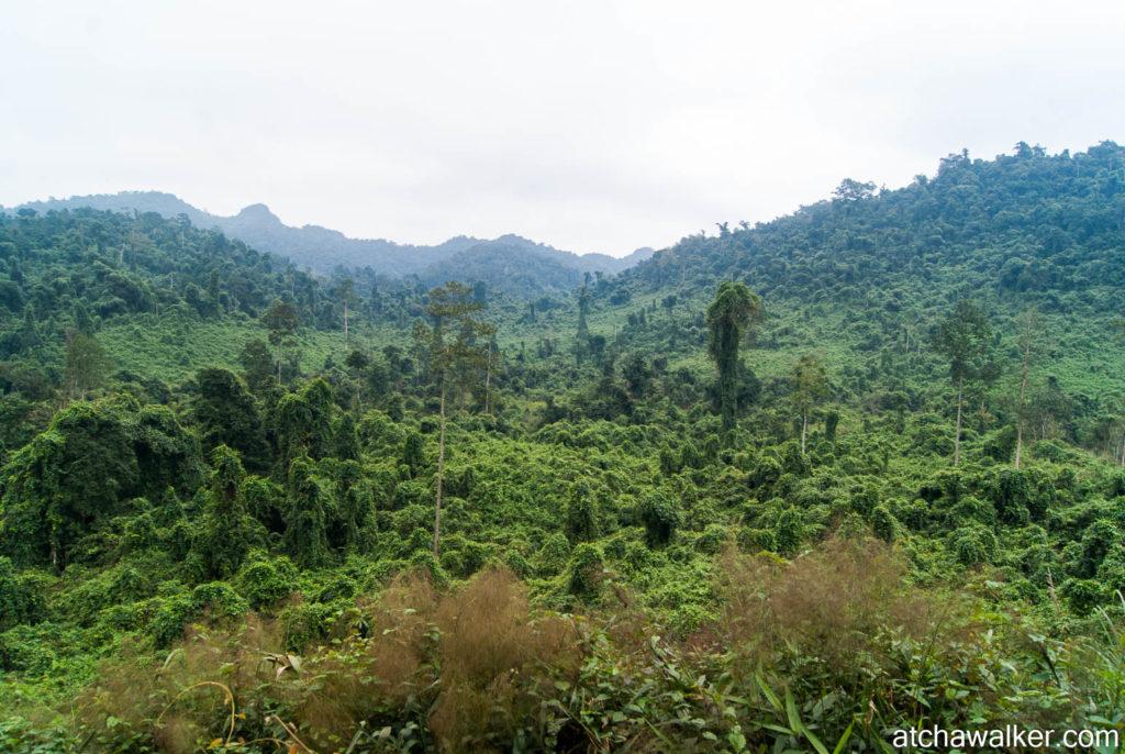 National Park de Phong Nha