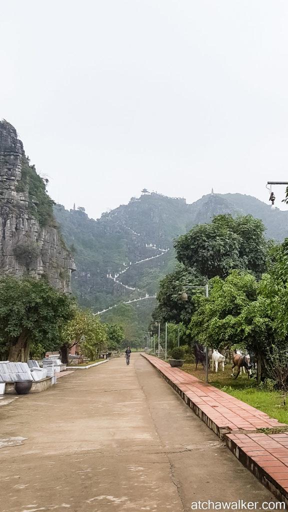 Escalier en vue! - Hang Mua Cave - Ninh Binh