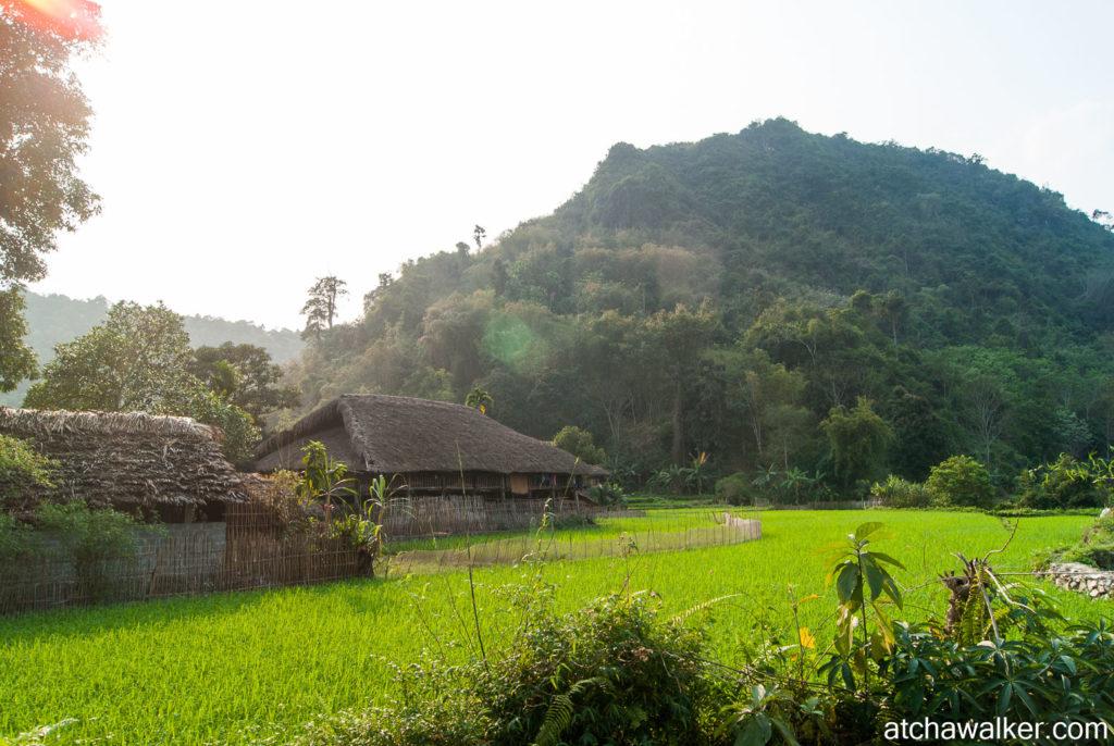 Village Tay - Ha Giang