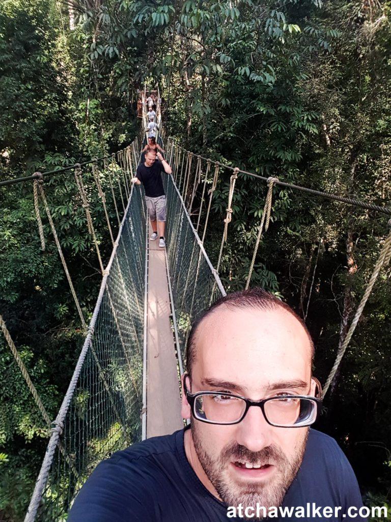 Le Canopy Walkway - Taman Negara - Malaisie