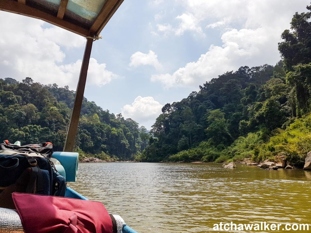 Encore 2h de bateau pour s'enfoncer d'avantage dans la jungle - Taman Negara - Malaisie