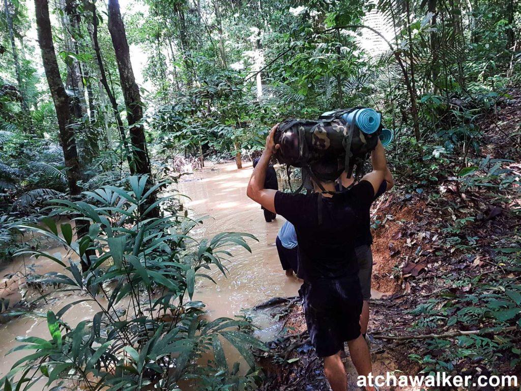Ya pas un hélico pour rentrer ? - Taman Negara - Malaisie
